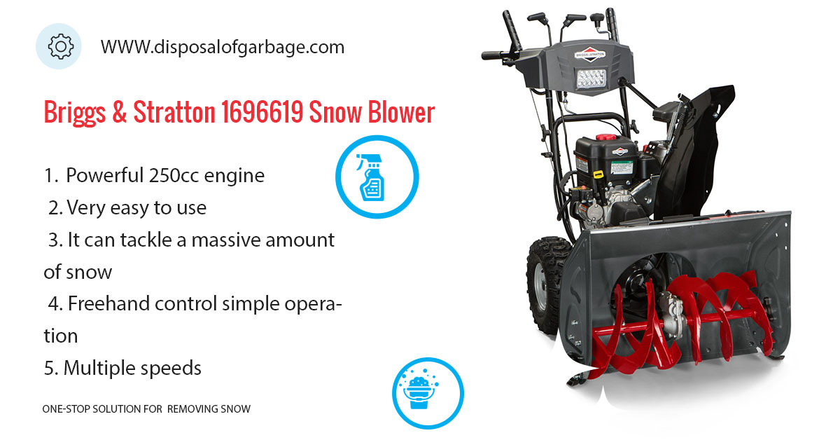 Briggs & Stratton 1696619 review